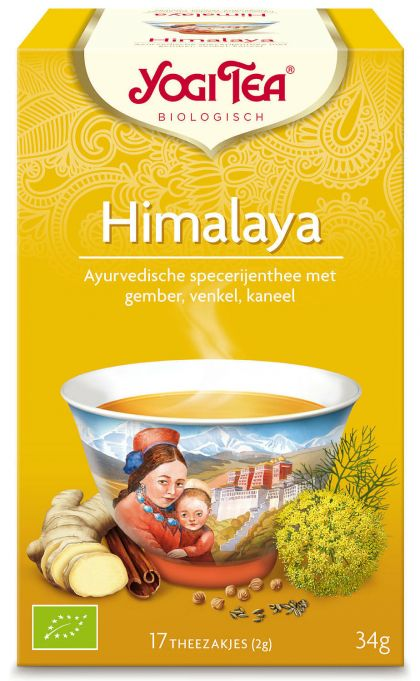 Himalaya Yogi